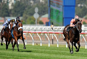 saturday sure things black caviar lightning stakes day the roar